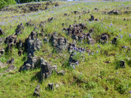 Lava outcroppings