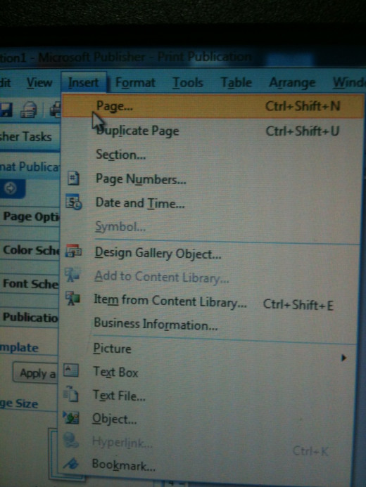 "From the top tabs, select ""Insert."" Hold to see the drop down menu. Select ""Page"" from the menu."