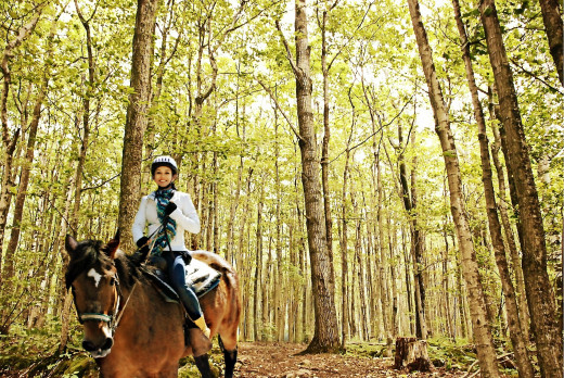 Horseback riding inside Bruce Trail of the Niagara Escarpment.  www.niagarariding.com