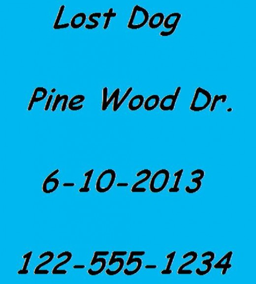 It is important to get lost dog flyers up as soon as you realize your dog is missing.