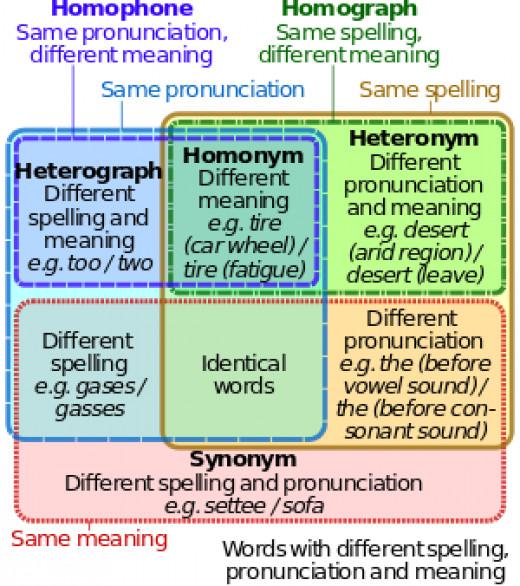Homophone and Homograph Venn Diagram
