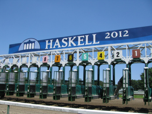 A Typical Horse Racing Starting Gate Where Horse Line Up and Start The Race
