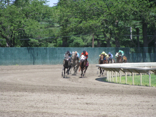 Dueling Horses Round The Final Bend at Monmouth Park, New Jersey