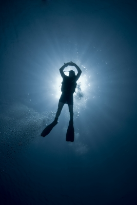 Scuba diver at one with the ocean