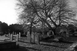 Haunted Graveyard