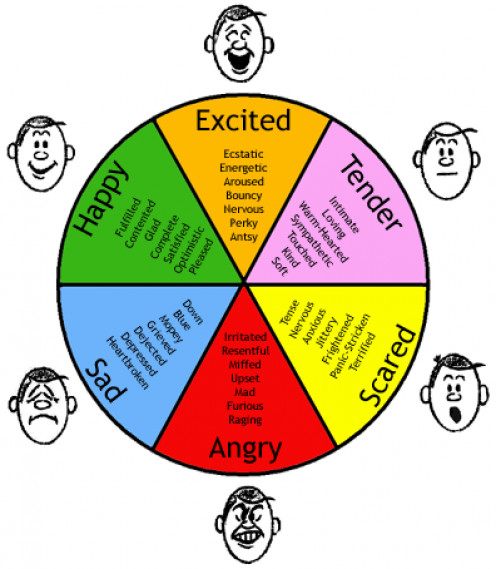 How to distinguish basic emotions.