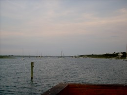 the distant masts of ships.