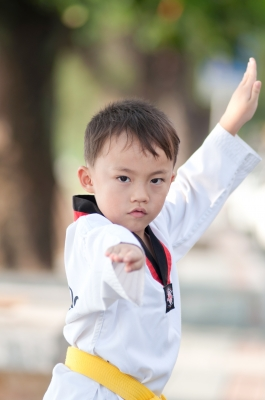 Becoming a martial arts master takes time.