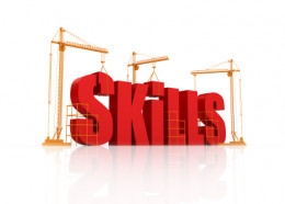 Skills For Quality Hubs