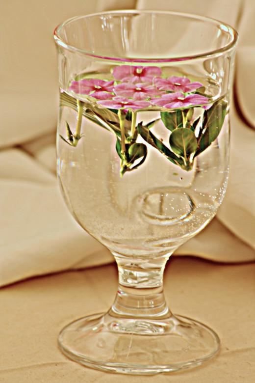 A floral arrangement for you!