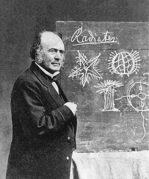Agassiz at Harvard, 1870.