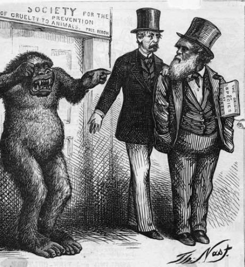 Caricature of Darwin by Thomas Nast.