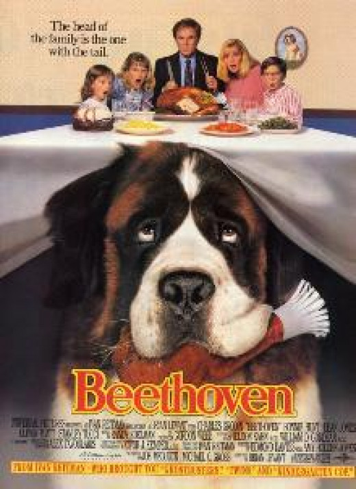 Beethoven DVD Cover
