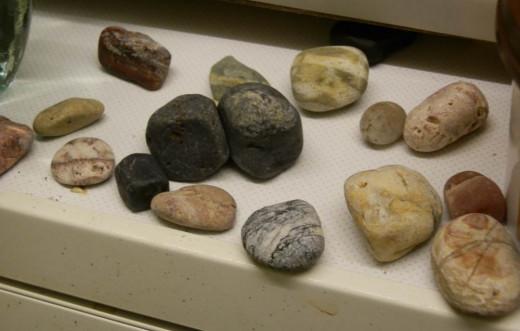 rocks makes great pets