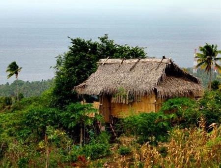 A nipa hut (bahay-kubo) with all kinds of vegetables and plants around it.