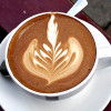Is Coffee Good For You, Best Types Choices, Health Facts and Benefits