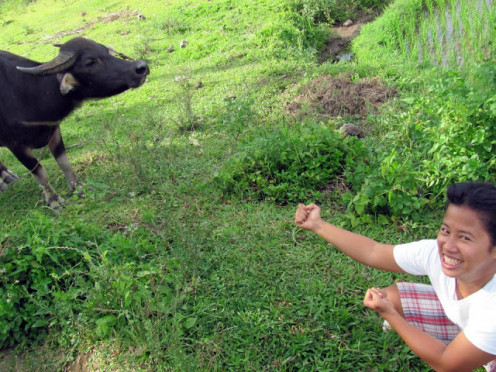 Oh no, that's the same carabao my sister fought with a few months ago! She can talk to animals, and fight with them too, just kidding.
