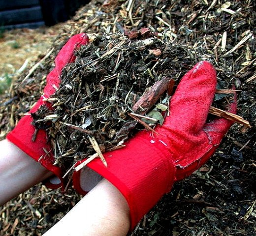 Mulch is a fabulous way to control weeds organically