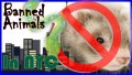 Idiotic Pet Laws | Banned Animals in New York City