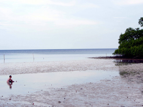 Tulapos Marine and Mangrove Sanctuary