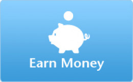 Earn money through Google Adsense.