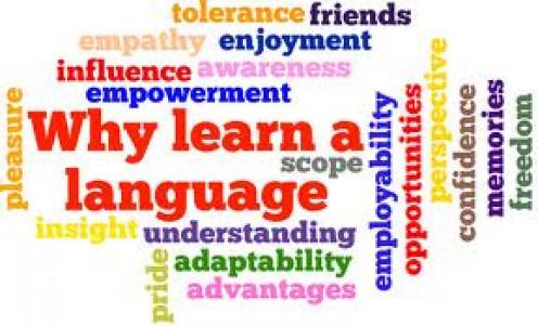 Understanding a language