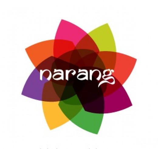 Narang Logo by New Design Group