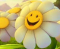Spread a Smile, Create an Epidemic