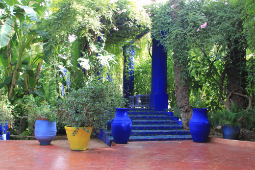 The amazing contast of the Jardin Majorelle in Marrakesh