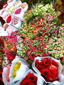 Vibrant floral burst