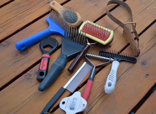 In a brushing session, almost all of these tools will be used for my long-haired dog.