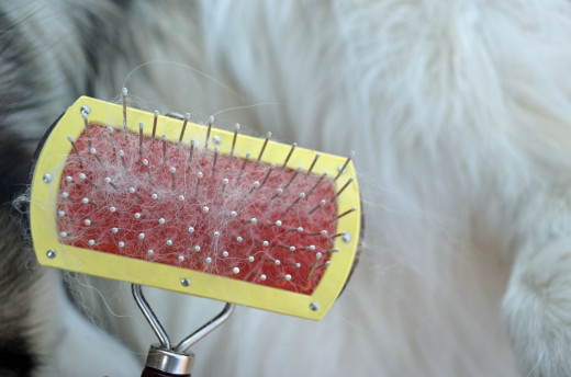 Pin brushes generally take off mostly surface fur and hair but do smooth the hair.
