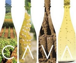 Spanish Cavas - Spain's sparkling wines