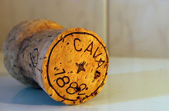 Cava cork important to the process of a Spanish cava.