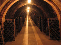 Codorniu cava where the sparkling wines are aged.