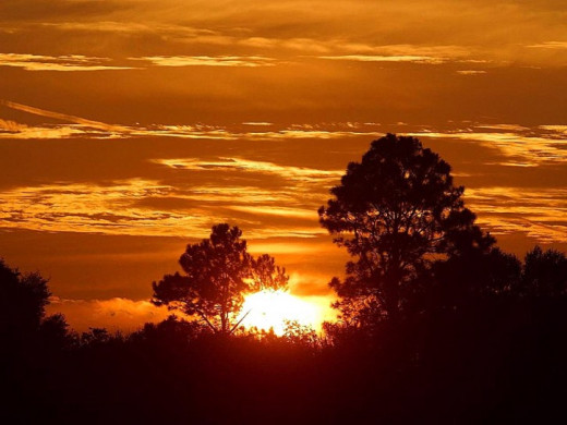 Sunrise in Africa public domain image picture