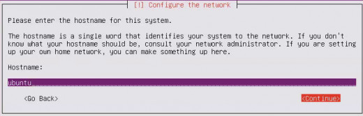 "Enter the hostname, the default ""ubuntu"" should be fine, select ""Continue"" and it ""Enter"""
