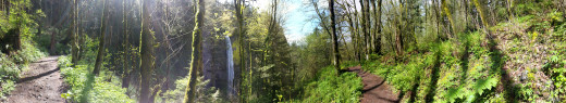A panoramic view near Latourell Falls.