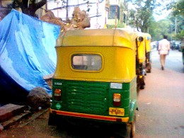 THESE 3 WHEEL VEHICLES CALLED AS AUTO RICKSHAWS RULE THE ROAD.NO POLICE DARE TAKE ACTION AS THEY HAVE A UNION WITH A NETA.