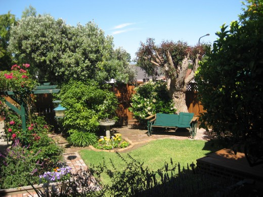 8 Easy Ways to Landscape Under Bird Feeders on Birds Backyard Landscapes id=81687