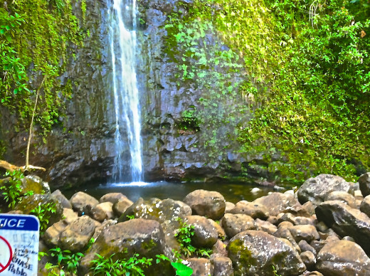 Here's the jewel at the end of your journey: a view of Manoa Falls.
