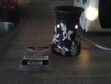 As you can see the bulb inside the warmer is very bright.