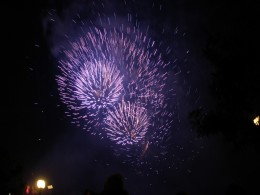 A fireworks display is a great field trip for children.  They can learn about pyrotechnics, photography, and society.