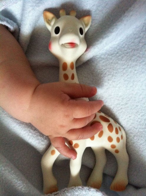 Sophie the Giraffe, not only a teething toy, but the best friend for my baby boy