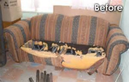 Sofa does come from a home with pets!