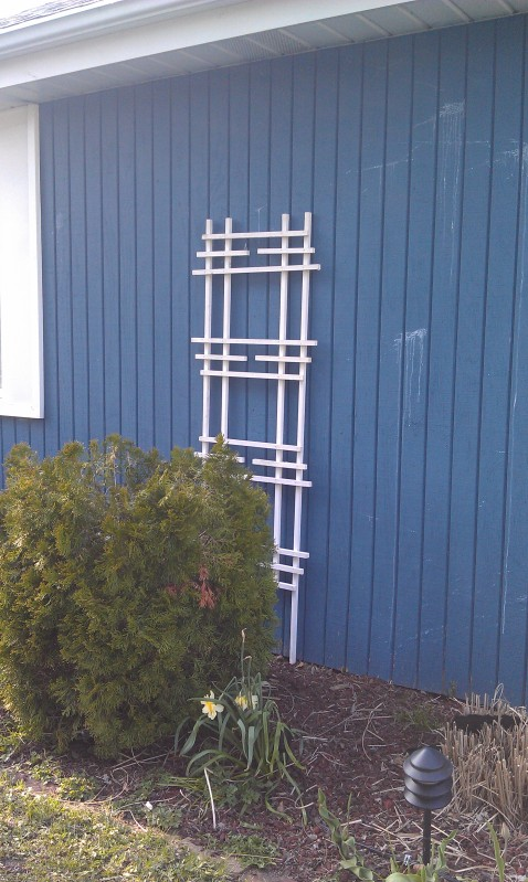 A trellis makes a bold statement on the front of the house this or without plants.