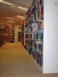 Library Media Specialist:  Library Collection Development
