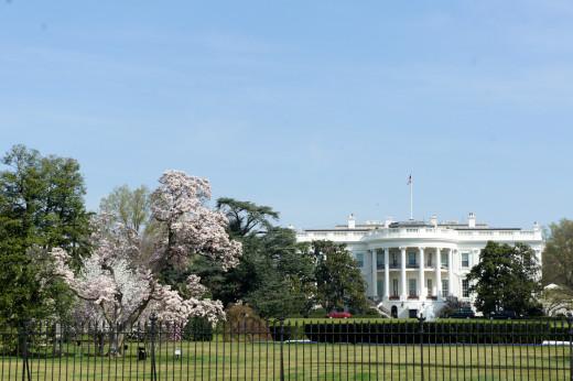 White House South Lawn, Downtown