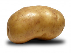 5 Things You Probably Didn't Know About Potatoes