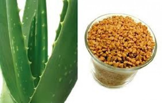 Aloe vera and Fenugreek both prevent hair loss during pregnancy Source: http://www.style-den.com